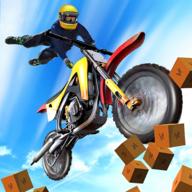 特技摩托车跳