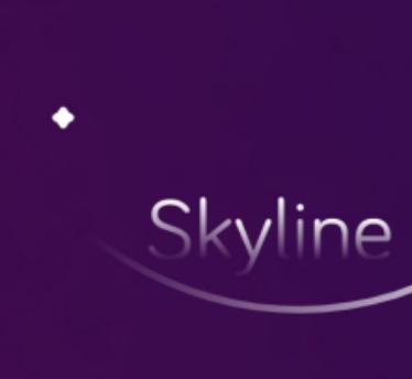skyline模拟器